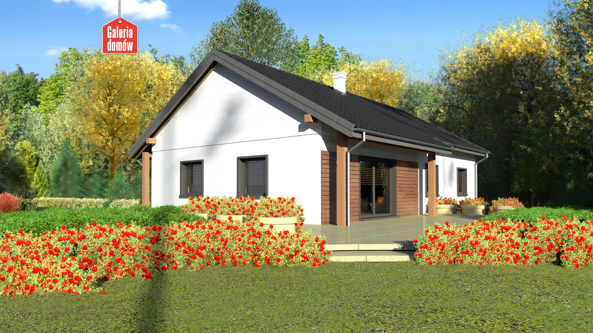 Dom przy Bukowej 30 - widok od ogrodu