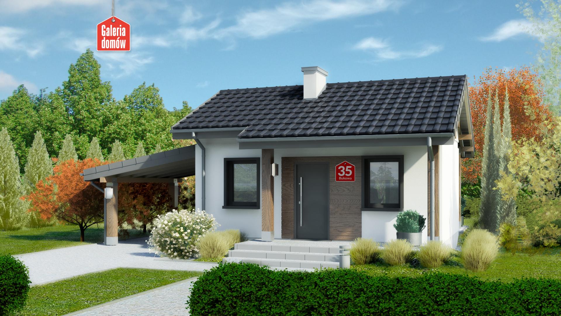 Zdjęcie projektu i wizualizacja: projekt domu Dom przy Bukowej 35