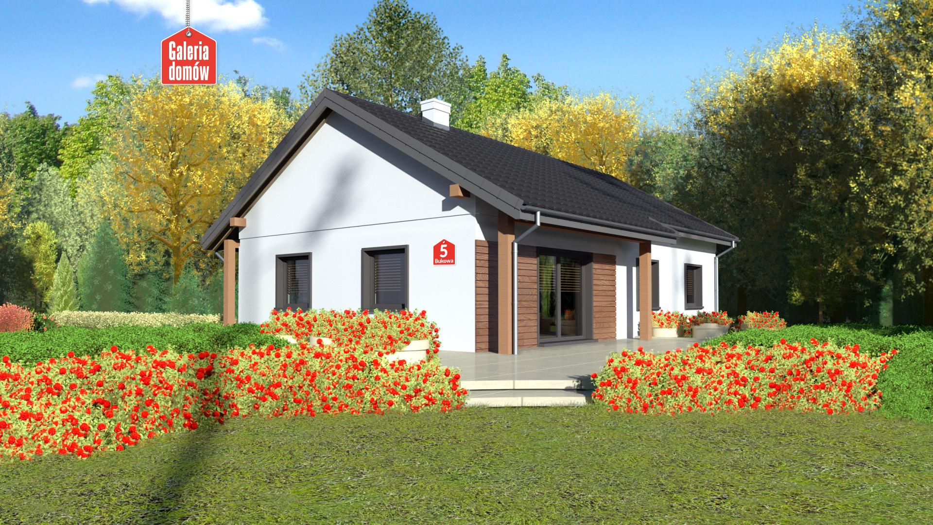 Dom przy Bukowej 5 - widok od ogrodu