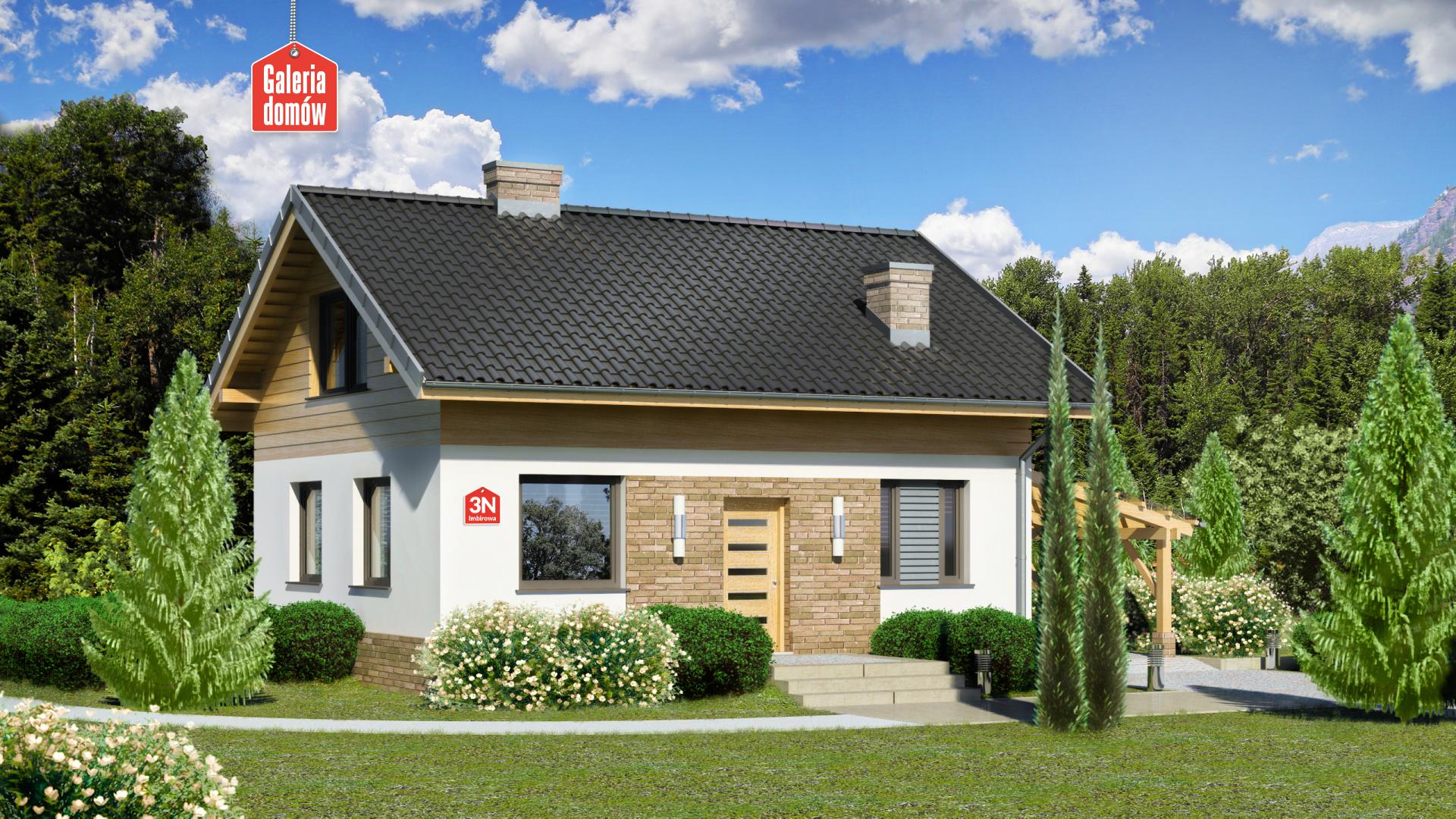 Dom przy Imbirowej 3 N - zdjęcie projektu i wizualizacja