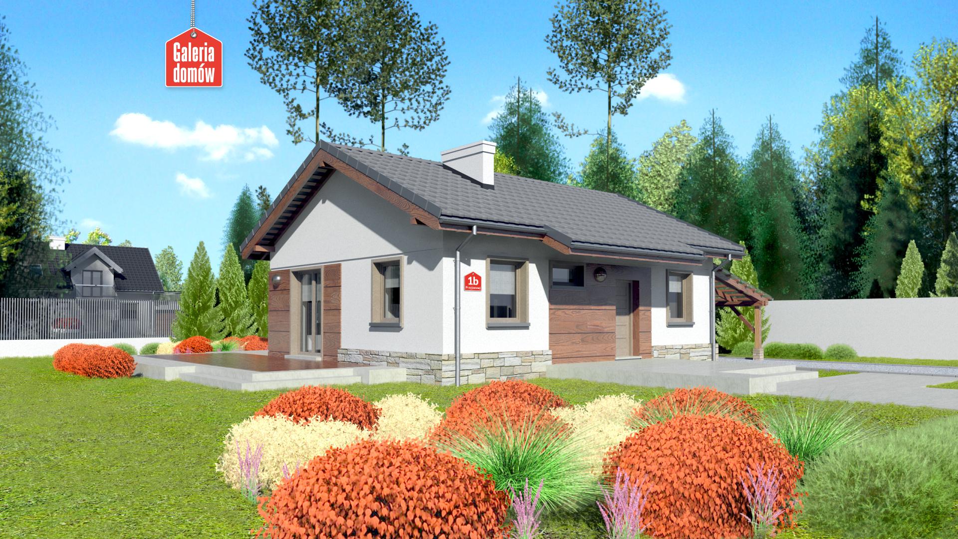 Dom przy Przyjemnej bis - zdjęcie projektu i wizualizacja