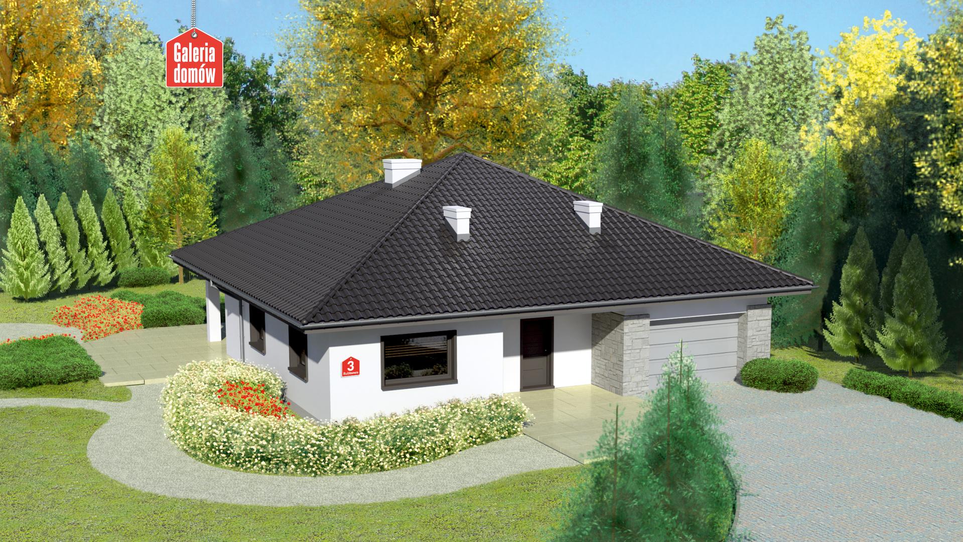 Zdjęcie projektu i wizualizacja: projekt domu Dom przy Rubinowej 3 bis